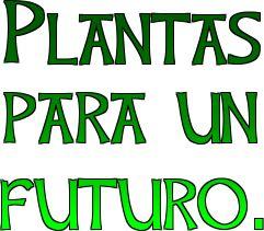PLANTAS PARA UN FUTURO http://www.ecohabitar.org/wp-content/uploads/2013/04/plantas-para-un-futuro.pdf