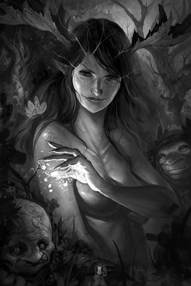 Dark Fairies Wood by Coliandre.deviantart.com on @DeviantArt