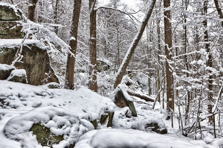 Photo taken on the Ledges Trail atLiberty Parkwhich is part of theSummitCountyMetroparksinTwinsburg(Ohio).