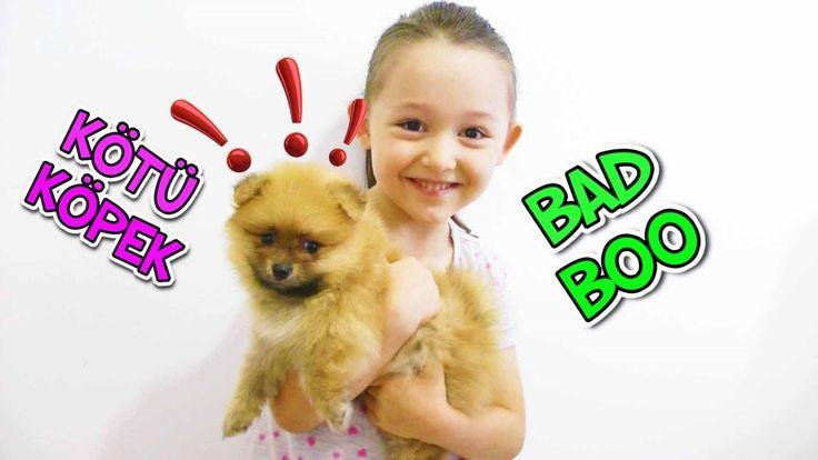 Artık Korkmuyorum !! Kötü Köpek Bad Boo ve Öykü Usta