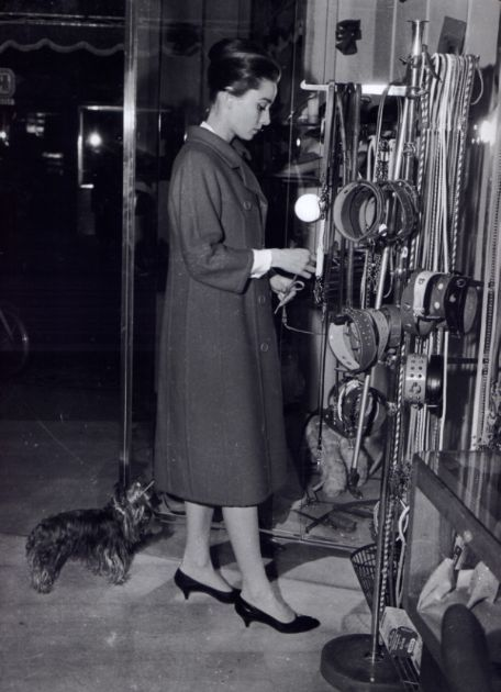 The actress Audrey Hepburn photographed with Mr. Famous (her Yorkshire Terrier) by Guglielmo Coluzzi during her shopping at a store on Via Crispi in Rome (Italy), in January 1960.Audrey was wearing:Coat: Givenchy (of red wool, double-breasted with buttons of resin in the same color, with collar à revers and raglan sleeves stopping above the wrists, detail of seams overstitched to describe a subtle and inverted shape of a goblet, length below the knees, liner of silk in the same color, of…