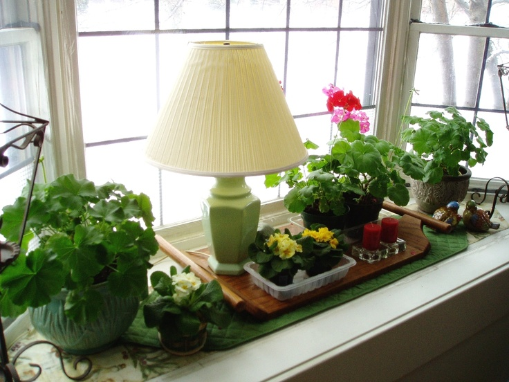 26 Windowsill Decoration Ideas: Ideas For Bay Window, Will Also Help Keep Dogs Out Of