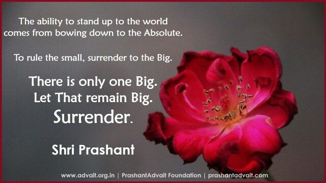 The ability to stand up to the world comes from bowing down to the Absolute. To rule the small, surrender to the Big.  There is only one Big. Let That remain Big. Surrender. ~ Shri Prashant #ShriPrashant #Advait #surrender #God Read at:- prashantadvait.com Watch at:- www.youtube.com/c/ShriPrashant Website:- www.advait.org.in Facebook:- www.facebook.com/prashant.advait LinkedIn:- www.linkedin.com/in/prashantadvait Twitter:- https://twitter.com/Prashant_Advait