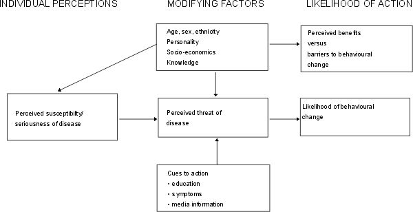 Health Belief Model (Hochbaum, Rosenstock and Kegels) HBM theorizes that a person will take a health-related action if they feel a negative health condition can be avoided. They have a positive expectation of avoiding a negative health condition if they take the action, and they believe they can successfully complete the recommended health action. This theory applies to  Extension educators in the health and nutrition fields.