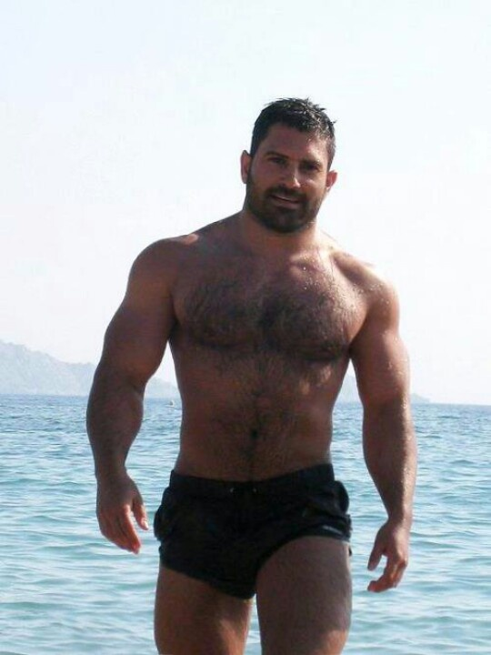 Gay hairy muscle