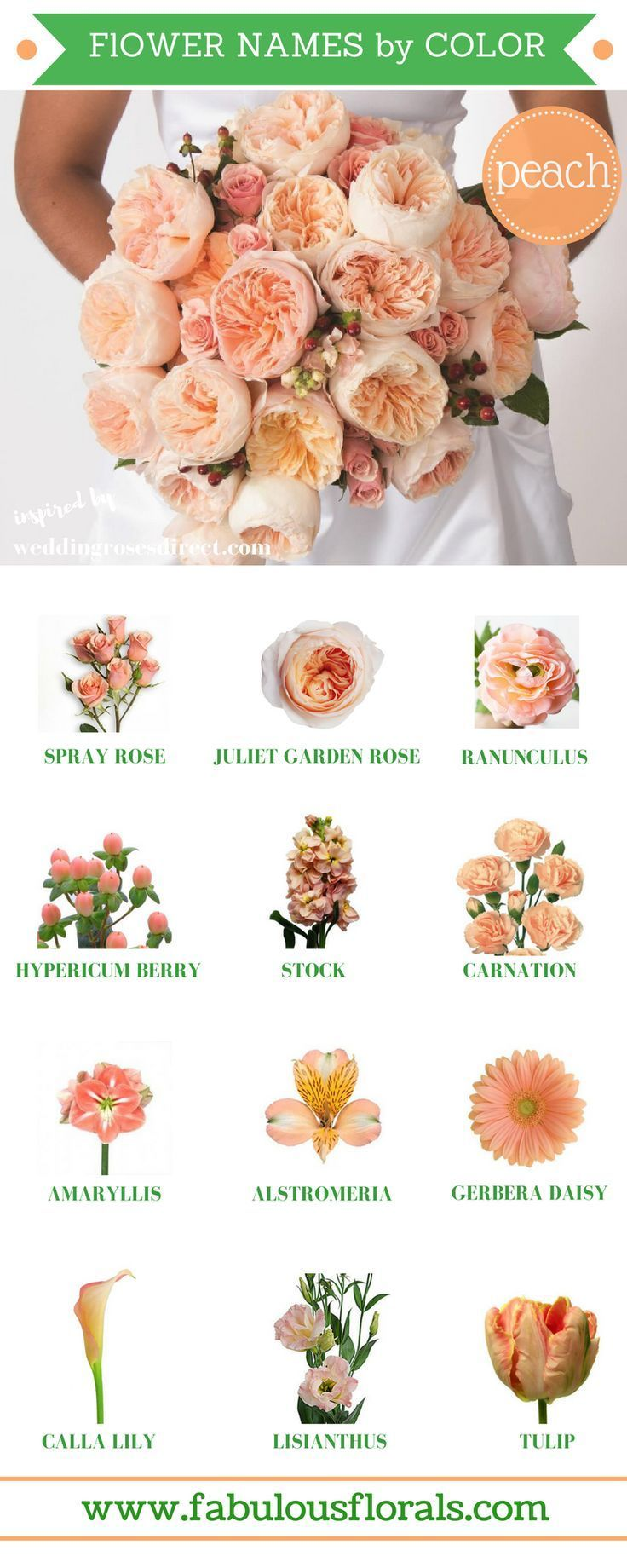 163 Beautiful Types Of Flowers A To Z With Pictures Wedding Flower Types Wedding Flower Trends Peach Wedding Flowers
