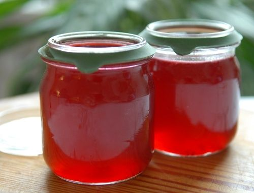 Vinbärsgelé gelé på vita, röda eller svarta vinbär