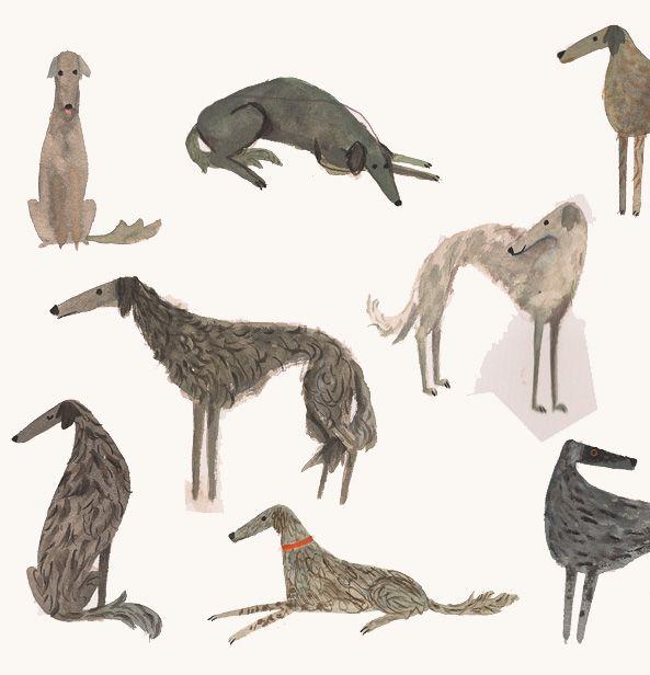 Christian Robinson | Russian Wolfhound Study 2010, Watercolor. www.amamillo.com