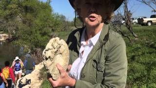 Dallas Paleontological Society - YouTube