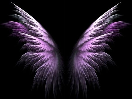 Purple Angel Wings - abstract, angel, 3d, wings, purple