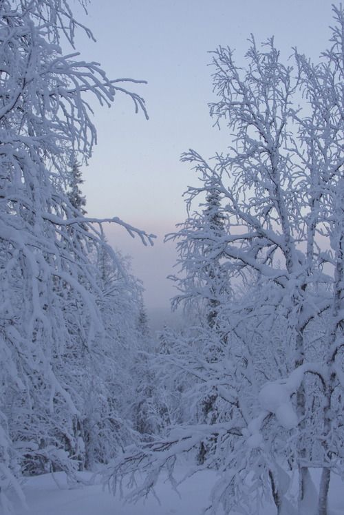 is wonderful to see the beauty of a winter landscape