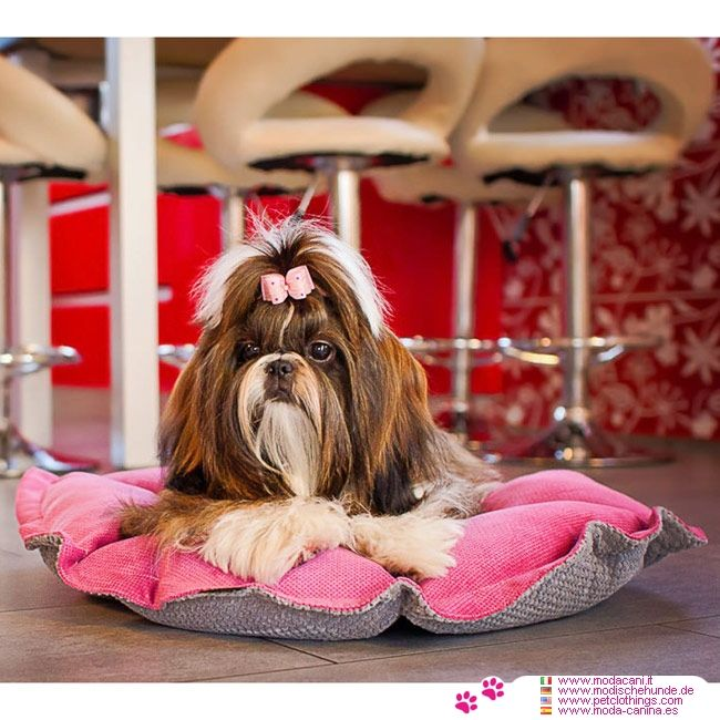 Cuccia/Cuscino per Cane Kalendula Rosa e Grigio #ModaCani #ShihTzu - Cuccia/Cuscino per Cane piccolo Kalendula in Rosa e Grigio: di forma circolare e double face, è resistente e lavabile in lavatrice; in 2 misure