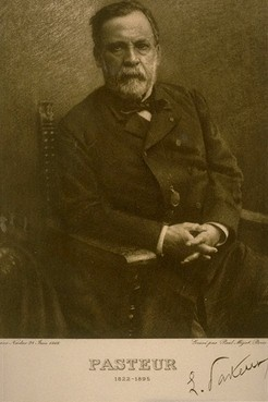 """Louis Pasteur discovered that most infectious diseases are caused by germs, known as the """"germ theory of disease,"""" it is one of the most important discoveries in medical history.Medical Science, Disease Info, Medical Nursing, Louis Pasteur, Infectious Disease, Germs Theory, Pasteur Discover, Medical History, Medical Human"""