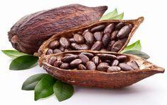 Stiati ca boabele de cacao intregi sau miezul acestora sunt cel mai puternic antioxidant dintre toate semintele, boabele si fructele?