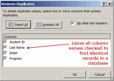 Remove Duplicate Data Records in Excel