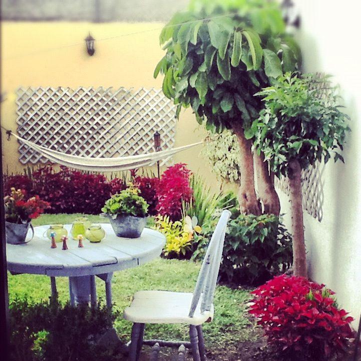 Mi jardín!