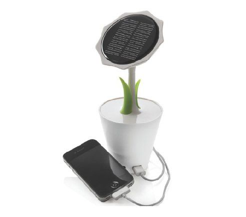 Desktop Charging Blossoms with Solar Sunflower