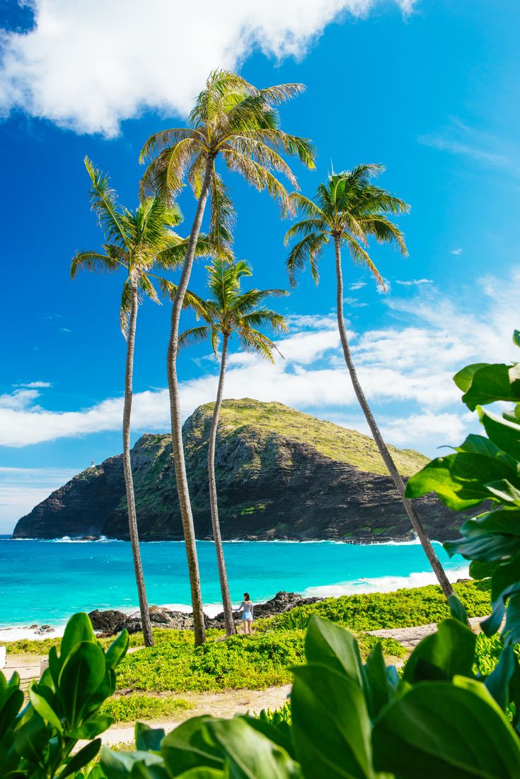 makapu_beach_park-oahu-hawaii-luke_shadbolt-nicole_warne-4
