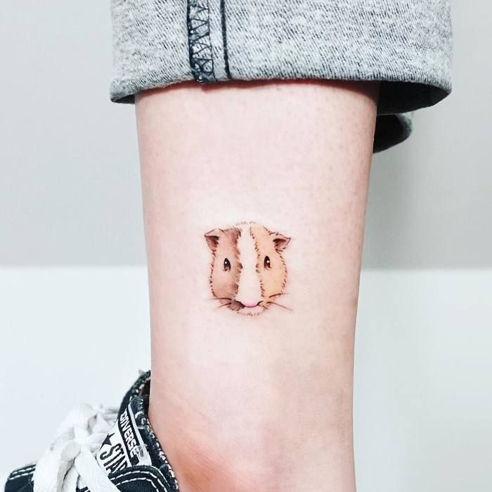best 25 pig tattoos ideas on pinterest pig drawing vegan tattoo and simple pictures to draw. Black Bedroom Furniture Sets. Home Design Ideas