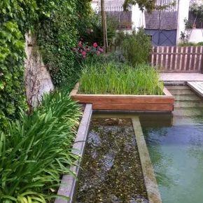 piscina naturalizada filtro biologico