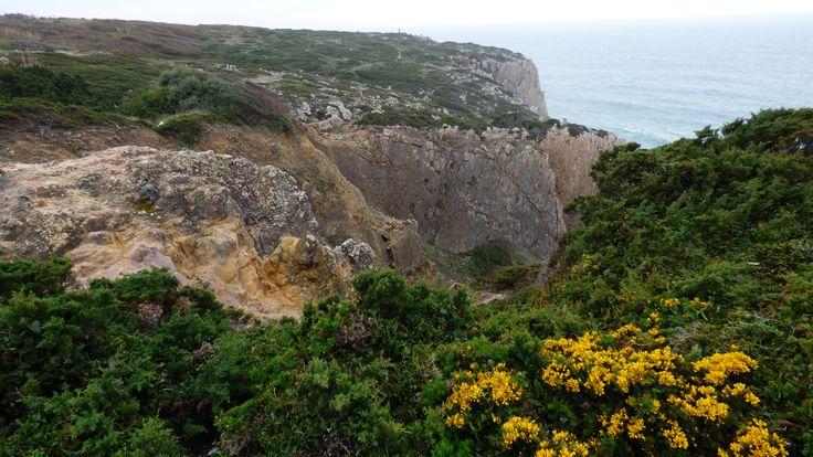 Pegadas de Dinossáurios no topo sul da Praia Grande, Sintra