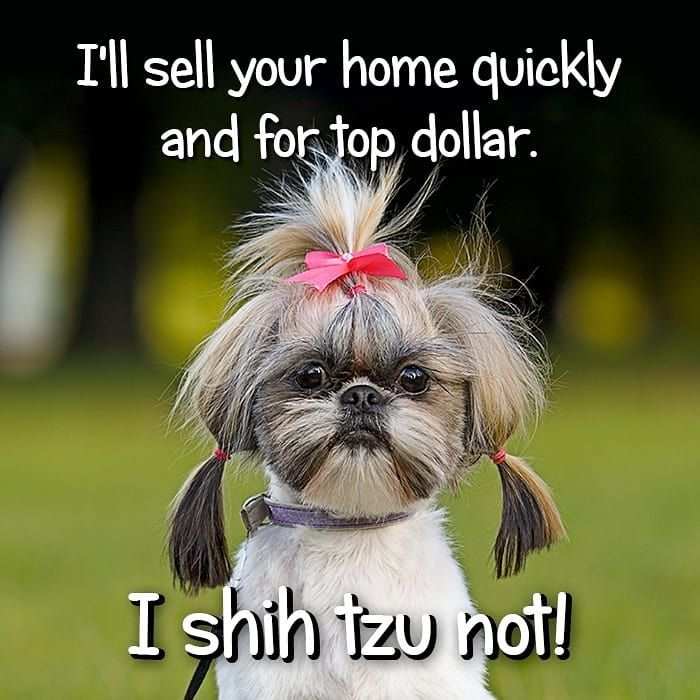 We Got The Jokes Tonight But We Will Sell Your Home For Top