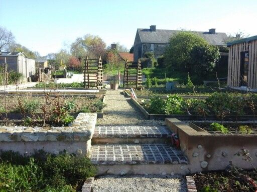 Veg garden.