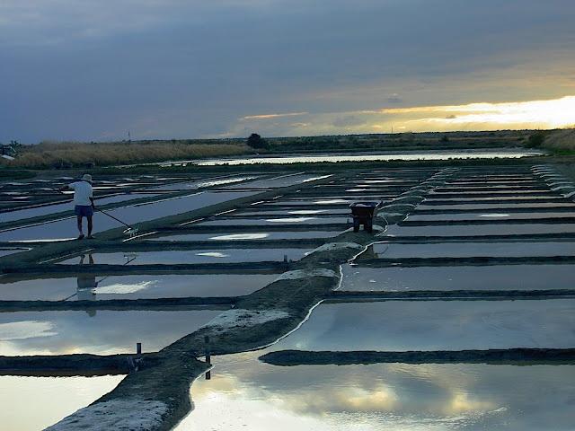 Les Salins à Loix sur l'Ile de Ré - Un souvenir de l'île de Ré...pourquoi pas un ballotin de sel !!!! | Charente-Maritime Tourisme #charentemaritime | #MaraisSalants | #IledeRé
