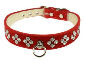Want to turn heads for the holidays? The velvet dog collar is trending, gorgeous, featuring Austrian crystals,  and still very affordable. Comes in many colors and different crystal patterns. Fabulous. Discover where to buy now: http://barkandswagger.com/the-velvet-dog-collar-perfect-holiday