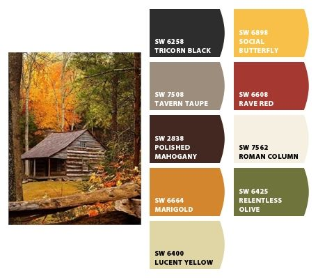 Old log cabin in the woods color palettes pinterest for Log cabin exterior stain colors