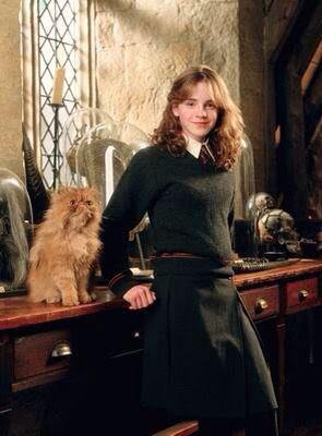 Hermione Granger  lt 3