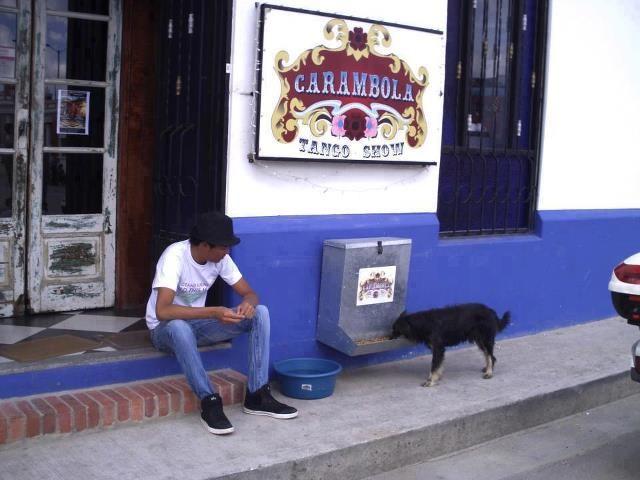 Restaurante colombiano disponibiliza comedouro para cães de rua