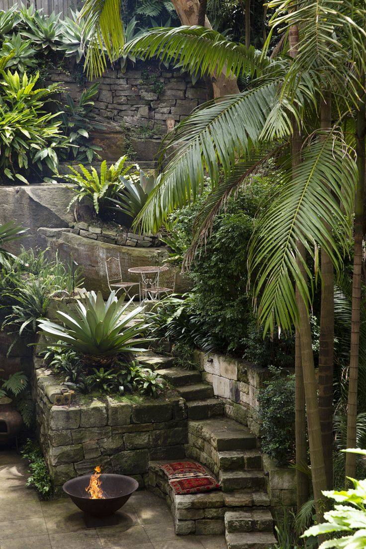 1122 best Tropical images on Pinterest | Tropical gardens, Gardens ...