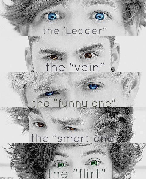 the video diaries. i wish they'd come back(: True directioner will repin! <3>>>Louis the leader cause there's nothing left<< Haha yes :P
