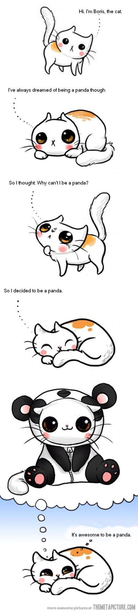 Why can't I be a panda? So ADORABLE!!