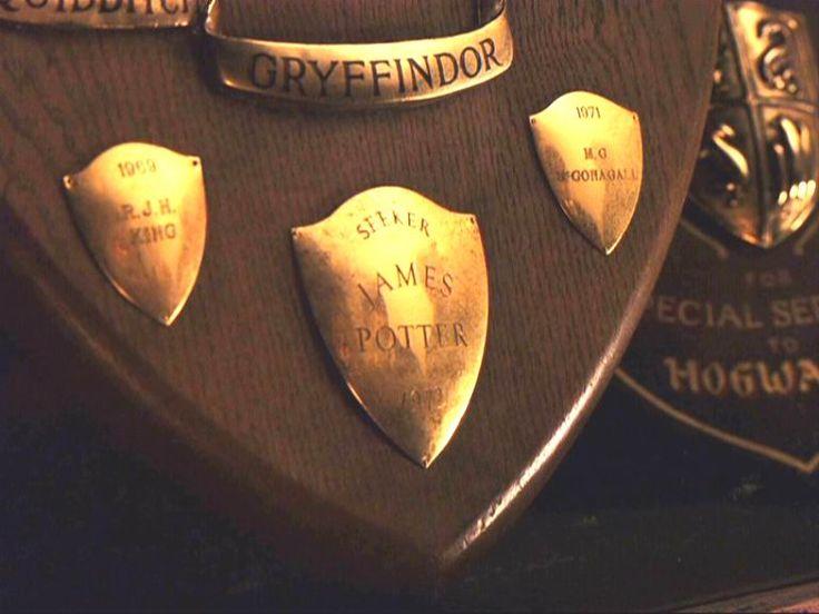 James Potter: James Of Arci, Professor Mcgonag, Hogwarts, James Potter, Antar Potter, Harry Potter3333, Quidditch Team, Potter Facts, Gryffindor Quidditch
