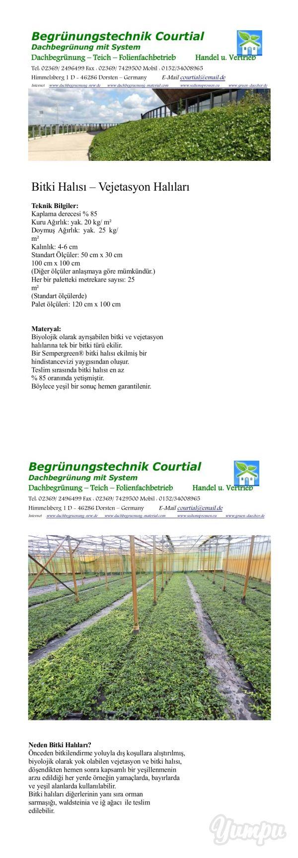 Bitki Halısı – Vejetasyon Halıları - Magazine with 3 pages: Çatı Yeşillendirmesi - Damkoruğu Yabani Çiçek Halısı - Baharatlı Bitki Halısı   İç ve Dış Mekanlarda Cephe Yeşillendirme Sistemleri