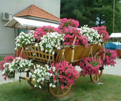 Carreta de flores carretillas carretas pinterest for Carretillas para jardin
