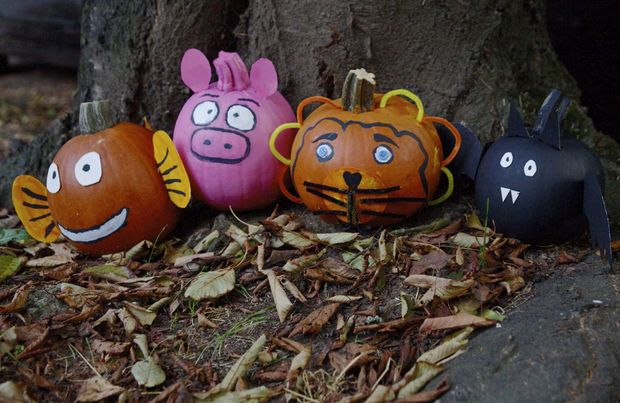 Painted pumpkin pals: How to create cute critters without carving (photos) | OregonLive.com