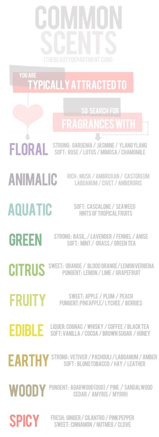 THE GREAT SCENT SEARCH   This excellent chart presents a list of scents that you may typically be attracted to and suggests herbs, spices, flowers or extracts that match those preferences.