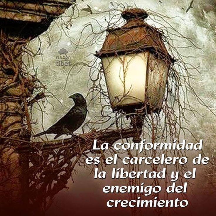 La conformidad es el carcelero de la libertad....