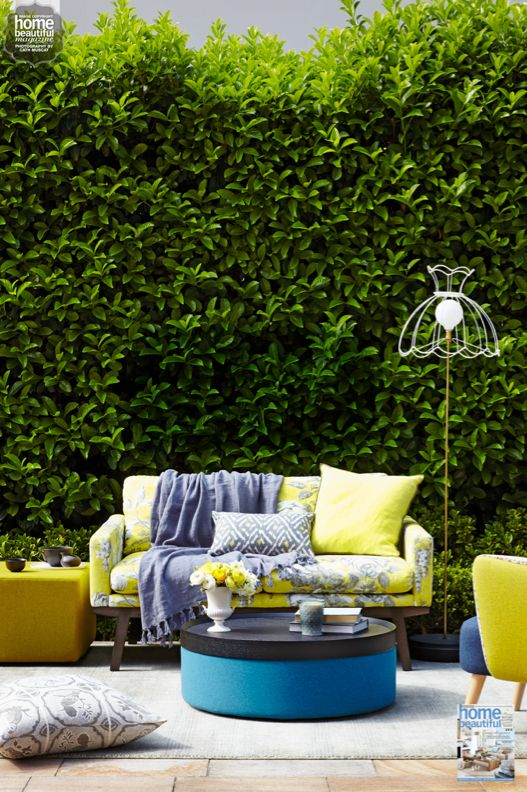 Lovely lemon adds the right about of sunshine to an outdoor room