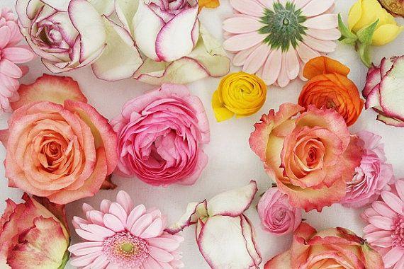 Colourful Flower Art Floral wall Art Pink by PetalsandJasmine