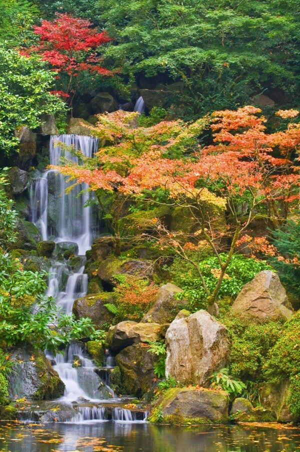 17 best images about cascading water falls on pinterest for Garden fountains portland oregon