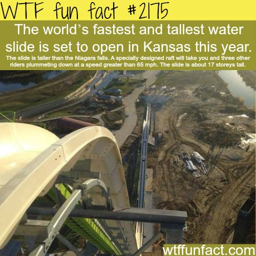 Tallest and fastest water slide - WTF fun facts: Fuck YOU crazy water slide. I want to live!!