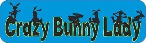 StickerTalk® Brand 10in x 3in Crazy Bunny Lady Vinyl Vehicle Magnet Magnetic Sign Car Magnets