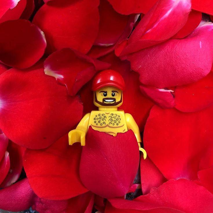 """Perché la domenica la si dovrebbe passare su di un letto di petali di rosa come in """" #Americanbeauty """" no ?  #vitadiunlego #legoman by fabio_legoman"""