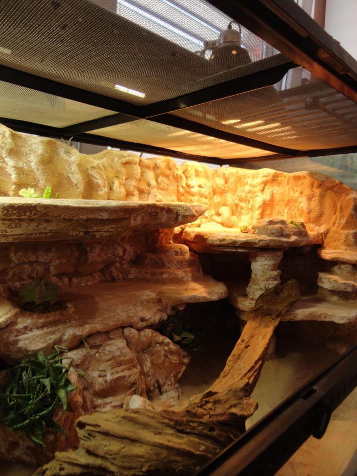 Uromastyx viv background build PIC HEAVY - Reptile Forums