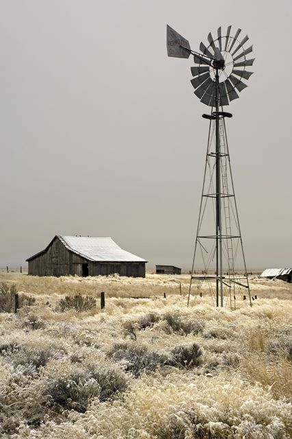 .Iconic Australian Outback scene complete with windmill.