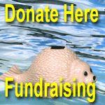 Donate Here - Fundraising